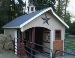 texas star horse barn