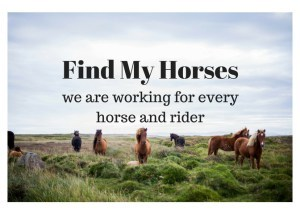 Find-My-Horses1